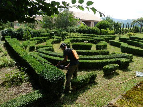 Lovisa paysagiste m con 06 99 00 88 41 sp cialiste de for Entretien jardin 41